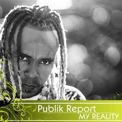 publik report