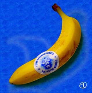 Fleuve Congo - Funny Monkey Radio