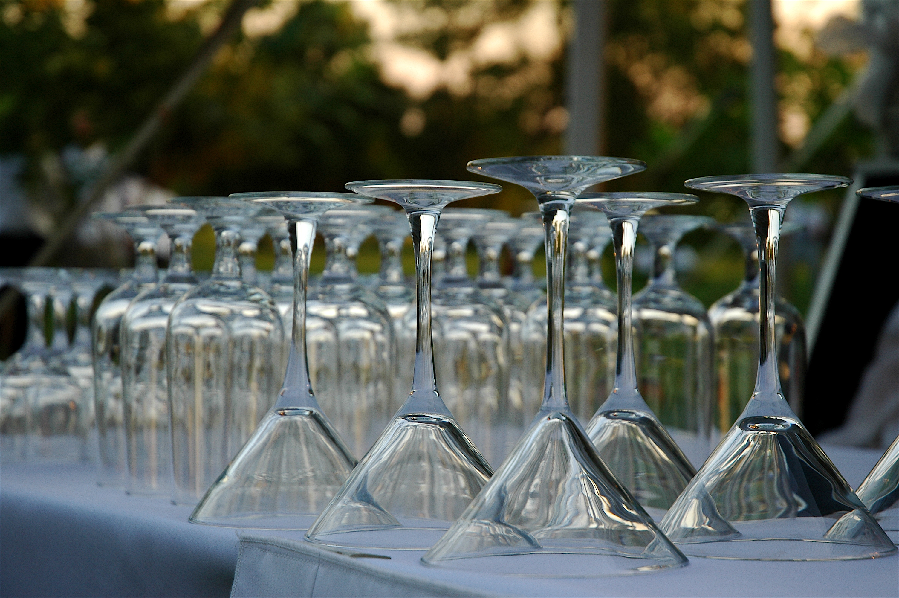 DeSapio Wedding, 2007 054