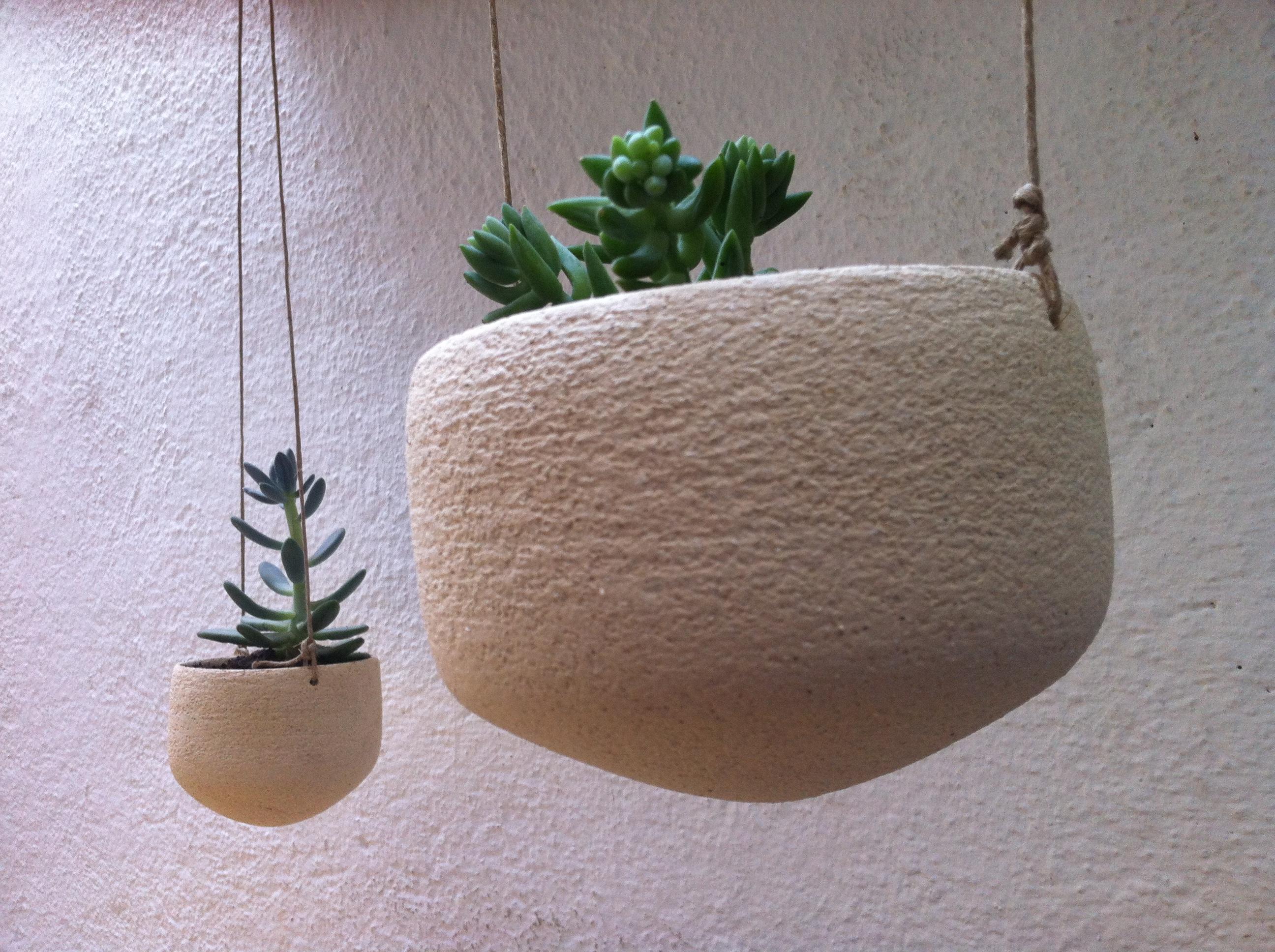 test-voladors-cactus