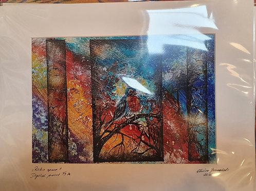 Print- Robin space