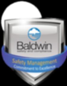 Baldwin Aviation Safety FINAL.png