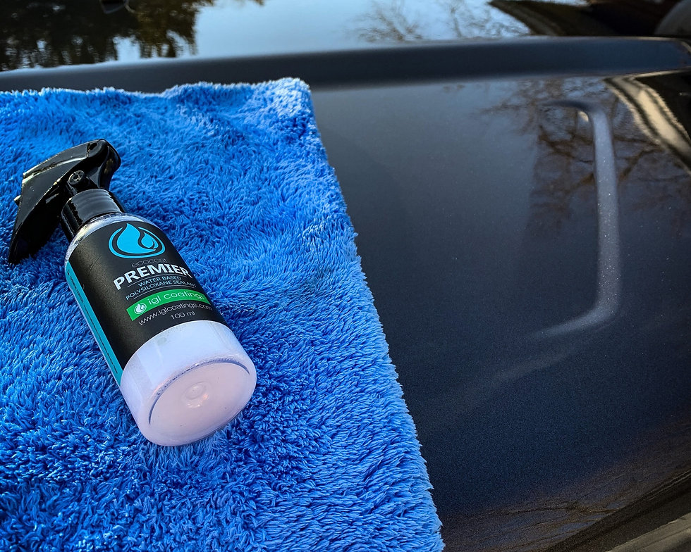 Automotive wax paint protection in a spray bottle