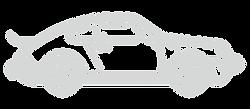 Platiunum Tier Porsche Icon