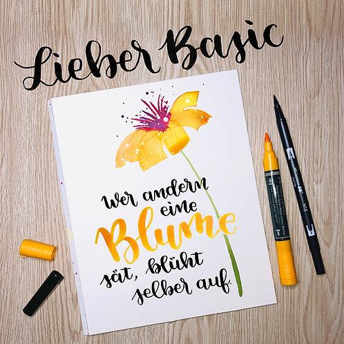 »Lieber Basic« ABC Brushlettering-Start