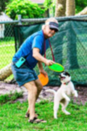 skipper frisbee 1.jpg