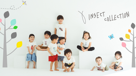 insect collection_2019SS