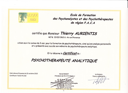 PSYCHOTHERAPEUTE ANALYTIQUE.png