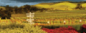 Barossa Valley panorama.jpg