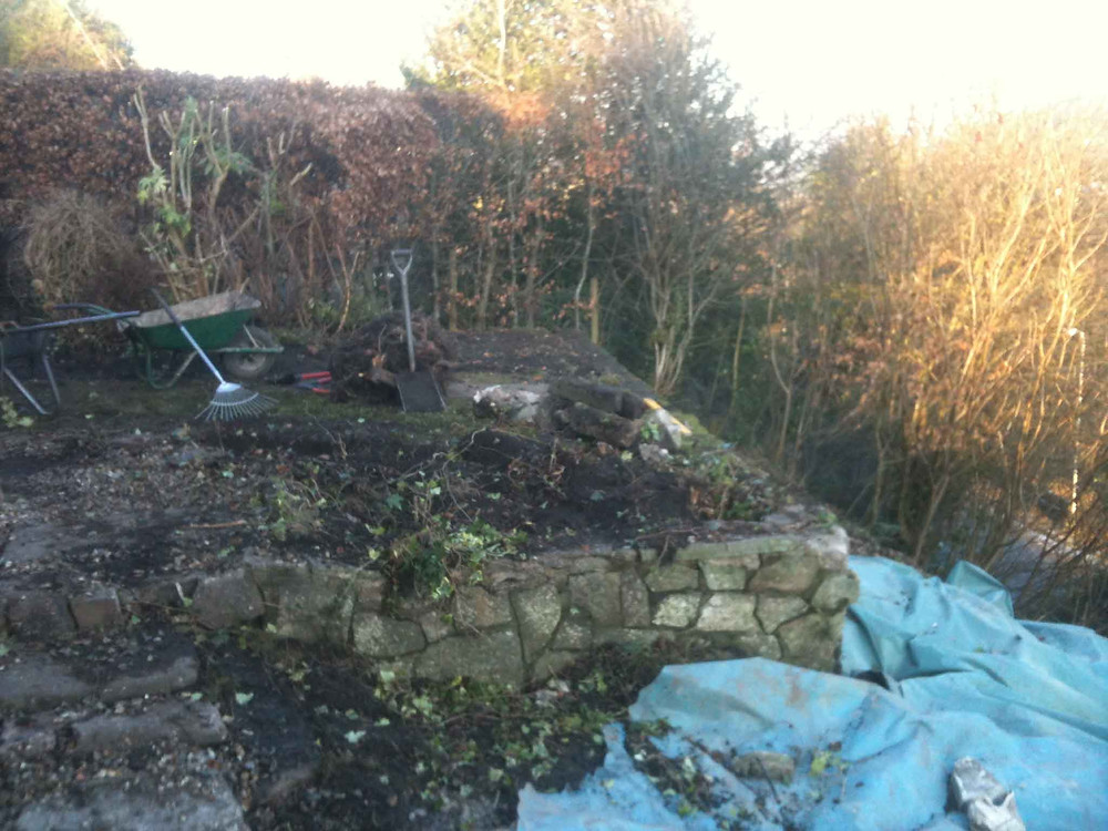 landscape garden design - plot before