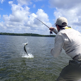 Florida on the Fly