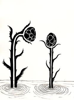Inktbloemen (Bestuiving)