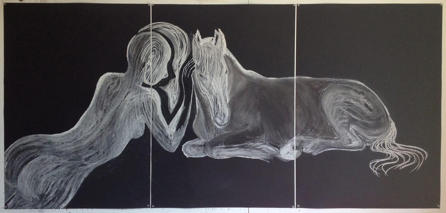 Zwartpaard, 2016