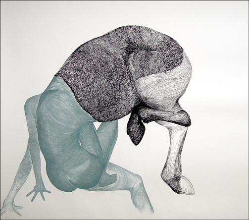 Paardentrui, 2005