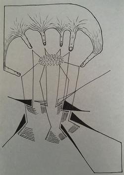 Spinvinger