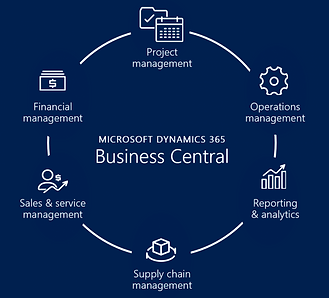 Business-Central-Application.png