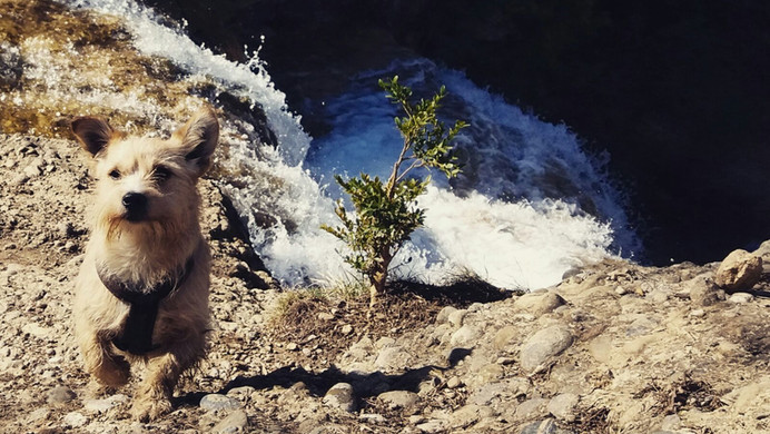 7 gorgs waterfalls hike