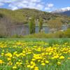 Pallars Lake