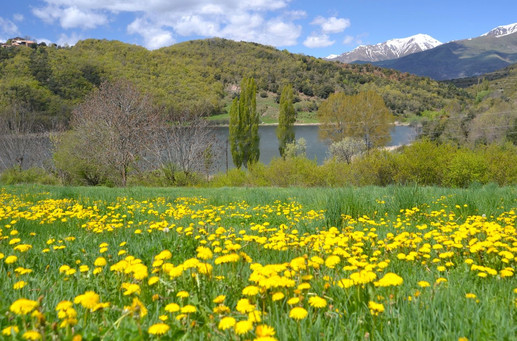 Pirineos - Lago en primavera