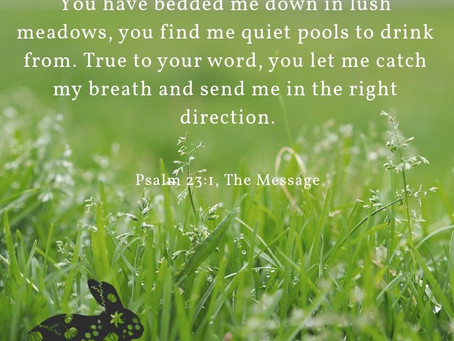 Haiku Devotionals by Rev. Kelly Sloan