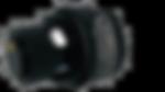 hydra_black_edited.png