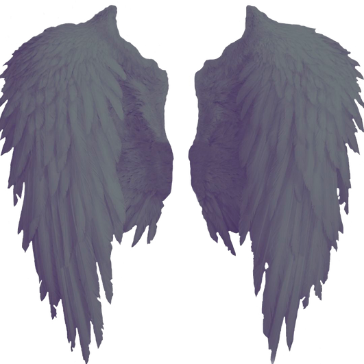 серые крылья.png