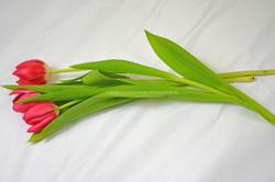bloemen 01