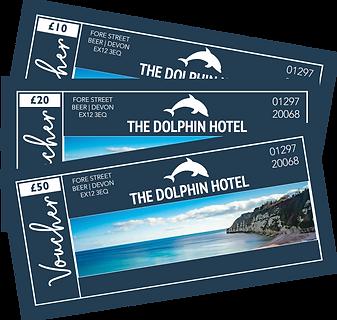 1Dolphin-Vouchers.png