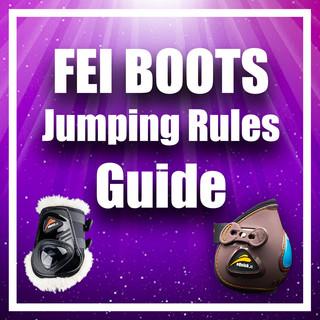 fei rules.jpg