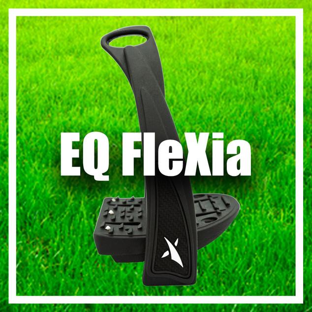 flexia.jpg