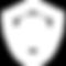 noun_Security_2078646_FFFFFF.png