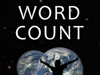 Preview of Make Every Word Count Novel