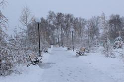 Аллея парка зимой.jpg