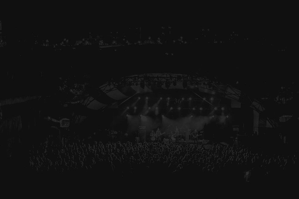 Music Concert_edited_edited.jpg