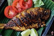 bitesandmore fish.jpg
