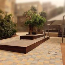 חצר בית ספר בלפור