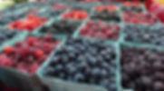 CHP berries 2018.jpg