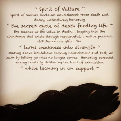 Vulture Meditation Card