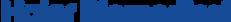 haier-logo_168x16.png