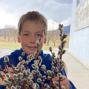 Palmbuschen-Tradition am BG-Tanzenberg