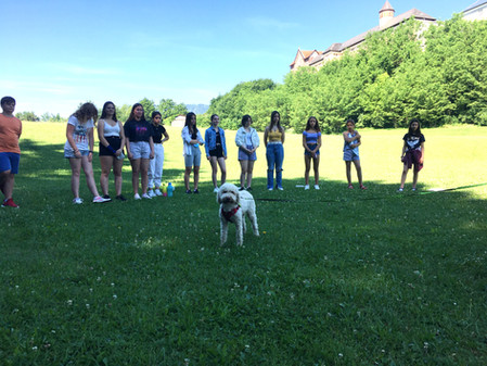 Tierschutzprojekt - Therapiehund Alba ist zu Besuch