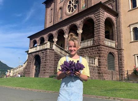Der Tanzenberger Lavendel – ein Sinnbild für unsere Schule