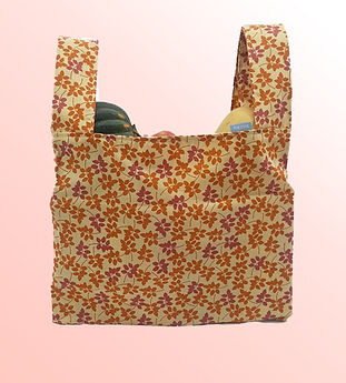 Shopping bag with background.jpg