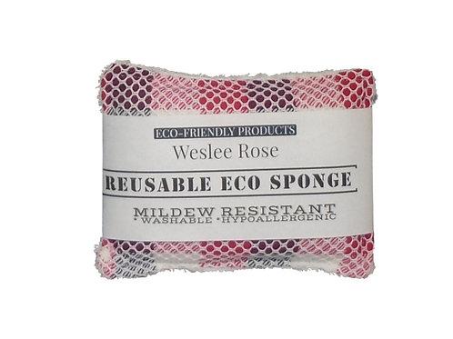 Eco Sponge