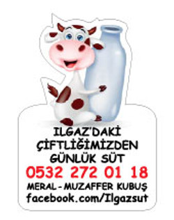 Süt Magnetleri