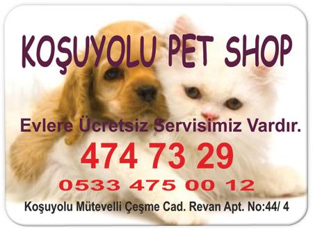Pet Shop Magnet Örnekleri