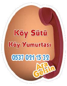 Yumurta Magnetleri