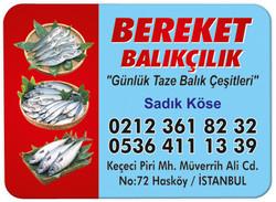 Balıkçılık Magnetleri