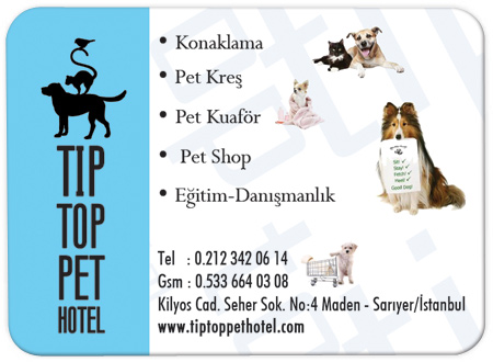 Pet Shop Magnetleri