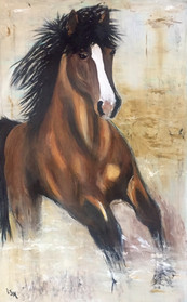 Phyllis' horse